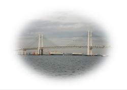 CIMG2004-01.JPG