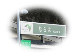 IMG_0991-01.JPG