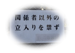 P1271736-01.JPG