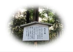 IMG_5280-01.JPG