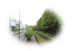 IMG_6574②.jpg